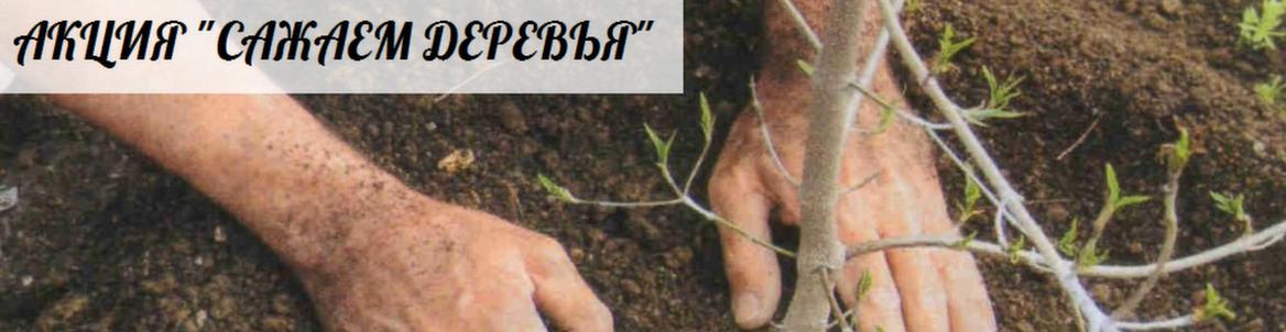 Видеть сон сажать дерево